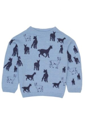 Childrens Merino Blue Jumper