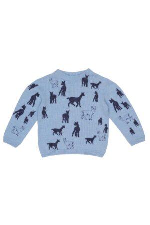 Childrens Alpaca Blue Jumper